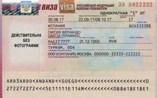 Виза в Россию для граждан Евросоюза – виды, как получить