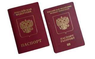 Биометрический загранпаспорт РФ: особенности внешнего вида и оформления