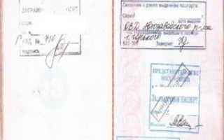 Серия и номер загранпаспорта РФ: где смотреть, сколько цифр и что они означают, как узнать, если паспорта нет
