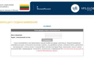 Проверка статуса визы: способы отслеживания готовности визы
