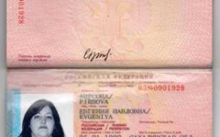 Виза категории Д в Болгарию (D) – в 2020 году, для россиян, как получить, оформление, страховка