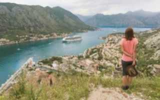 ВНЖ в Черногории для россиян в 2020: что дает, как получить вид на жительство россиянам и иным гражданам, можно ли при покупке недвижимости?
