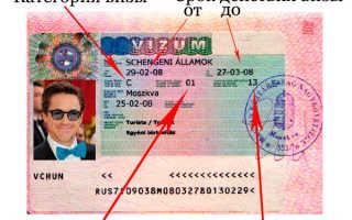 Виза в Венгрию: требования к документам, сроки оформления