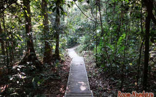 Таман Негара, Малайзия — подробная информация с фото