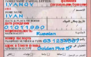 Виза в Египет: получение, оформление, документы, стоимость. Таможня Египта