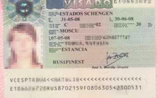 Как проверить готовность визы в Испанию на сайте визового центра в 2020 году — рассмотрим суть