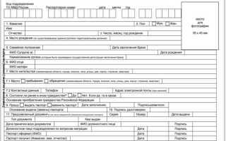 Получение паспорта РФ после получения гражданства: бланк заявления