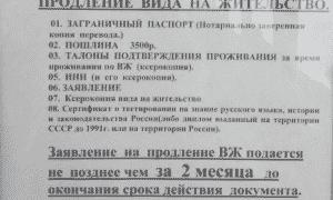 Заполнение бланка заявления на вид на жительство в России