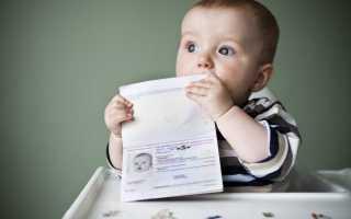 Загранпаспорт для новорожденного: необходимые документы, особенности оформления и получения в 2020 году