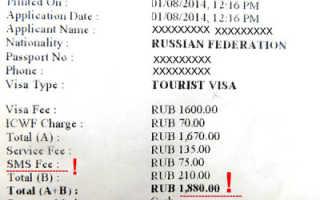 Документы на визу в Индию 2020: какие нужны, оформление, список, куда подавать, сроки подачи для россиян