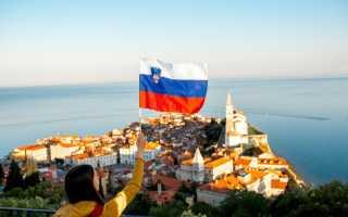 Образование и обучение в Словении для русских и украинцев в 2020 году: лучшие университеты страны