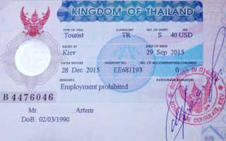 Виза в Таиланд для украинцев в 2020 году: нужна ли она, стоимость оформления