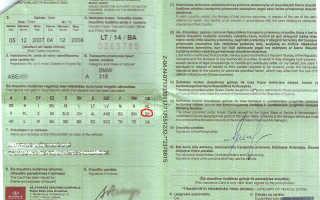 Правила пересечения границы с Белоруссией для граждан РФ: пропускные пункты, таможня