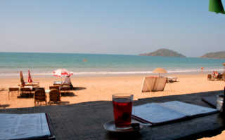Отдых на Гоа в 2020 году: обзор пляжей, цены на продукты и жилье, отзывы туристов