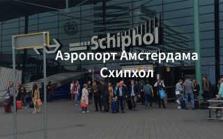 Какой транспорт ходит из аэропорта Схипхол до Амстердама?