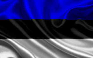 Эстонские ВНЖ и гражданство: временное и постоянное, электронное, как получить, документы
