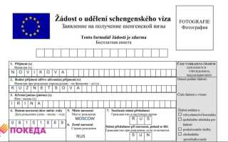 Образец заполнения заявление на получение шенгенской визы 2020