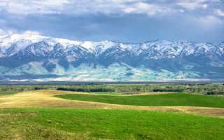 Иммиграция в Казахстан из России: доступные способы, отзывы переехавших