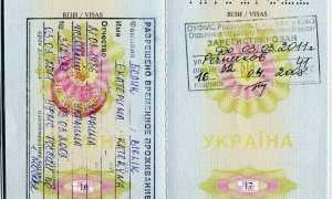 Стоимость оформления РВП в России иностранцам
