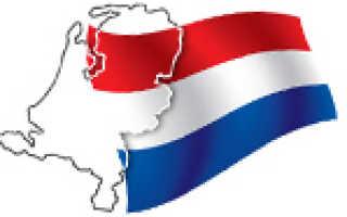 Эмиграция в Нидерланды: как получить гражданство, ВНЖ и ПМЖ