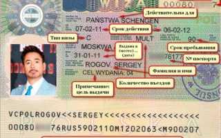 Визы в Европу: виды, документы для оформления, стоимость