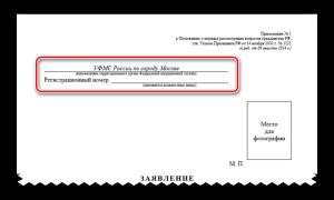 Образец заполнения заявления на гражданство РФ 2020 – бланк, скачать