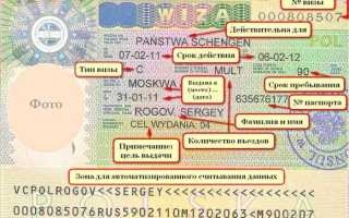 Польская рабочая виза: нюансы лёгкой иммиграции