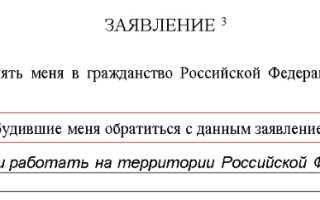 Образец правильного заполнения заявления на гражданство РФ