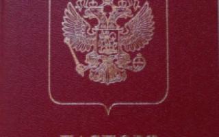 Служебное удостоверение личности