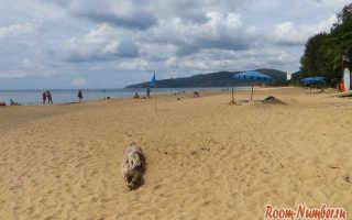 Пляж Карон, Таиланд — подробная информация с фото